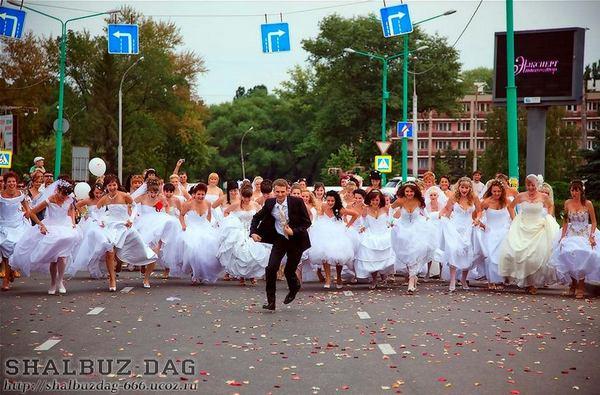 Свадебные приколы (55 фото)