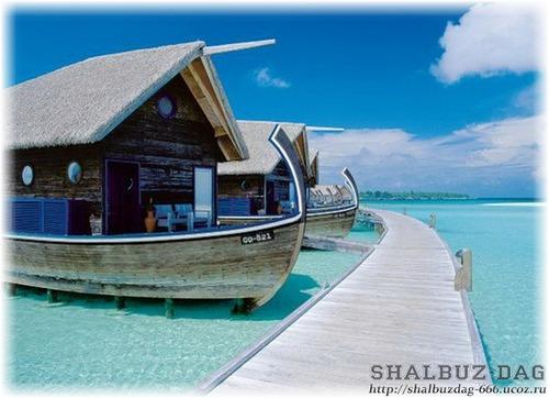 Курорт Сocoa island (19 фото)