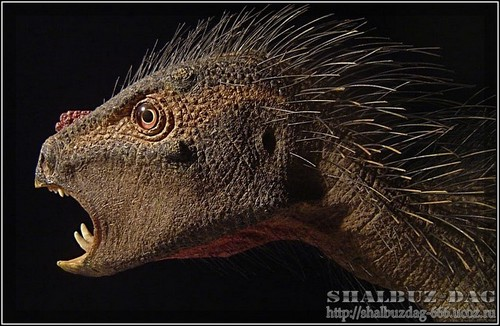 Найден мини-динозавр с клювом попугая и иглами дикобраза